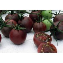 Редкие сорта томатов Черный шоколад