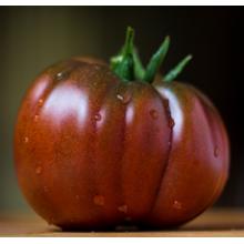 Редкие сорта томатов Тульский черный