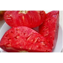 Редкие сорта томатов Австралиец