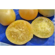 Редкие сорта томатов Белый Персик