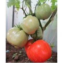Редкие сорта томатов Делишес