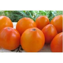 Редкие сорта томатов Мармеладный