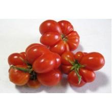 Редкие сорта томатов Рейсейтомейт