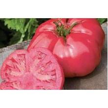 Редкие сорта томатов Розовый Слон