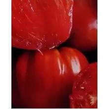 Редкие сорта томатов Сердцеед