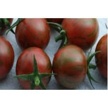 Редкие сорта томатов Цзы-Ю